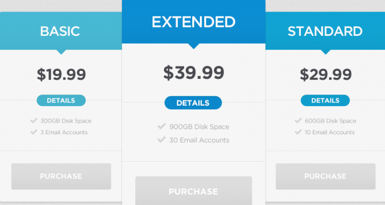 ecommerce pricing models1